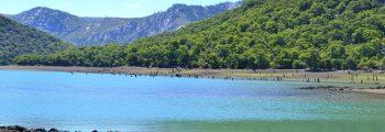 Investigación sobre la transición climática en Chile